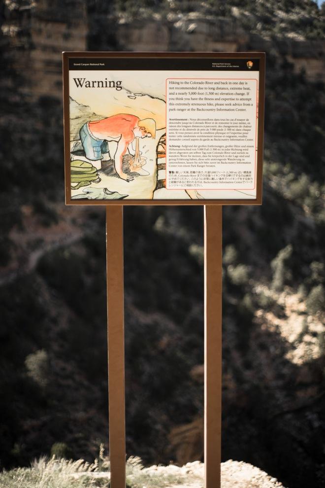 DSC02834
